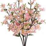 Huile essentielle de fleur de Pommier